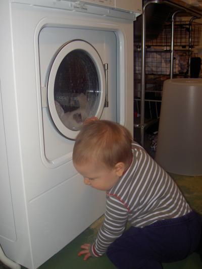 Tvättmaskinen